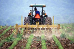 rfid e agricoltura 4.0